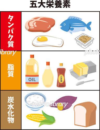 5大栄養素について